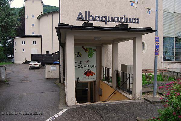Albaquarium Bild 1